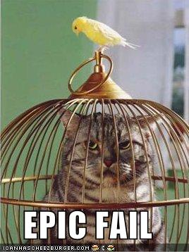 funny-pictures-bird-cat-cage.jpg