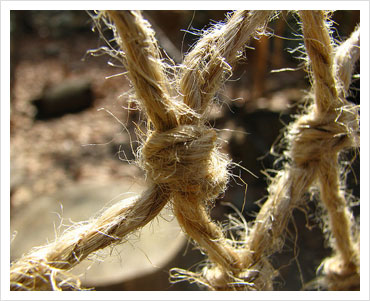 Knots by Uncle Catherine, on Flickr