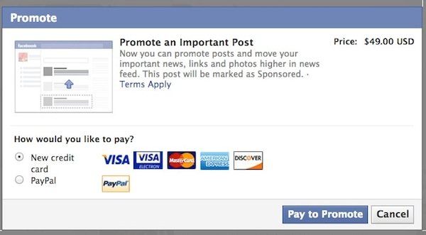 Pay to Promote on Facebook image
