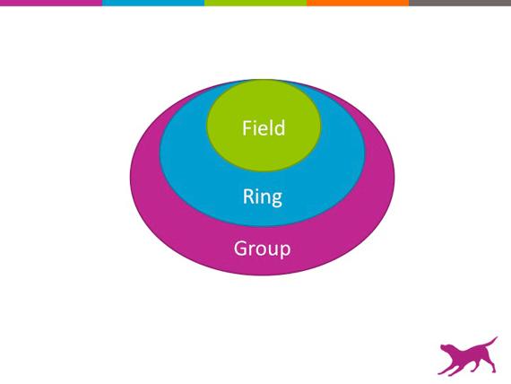 Field_Ring_Group_v2