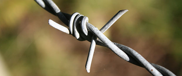 Barbed_wire_Richard_Leonard_Flickr