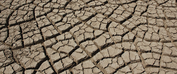 Cracked_earth_in_the_Rann_of_Kutch_Vinod_Panicker